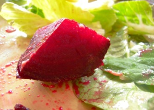 Beets and simple salad