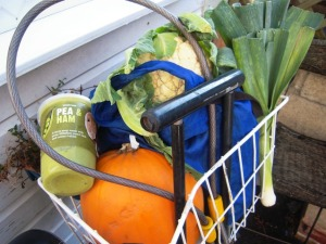 Bike basket cornucopia